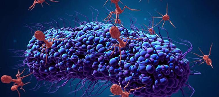 Corona Covid-19 (Korona) Virüs Nasıl Bulaşır